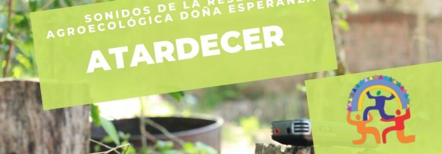 Doña Esperanza – Sonidos de la reserva – Atardecer. (Escuchar con auriculares).